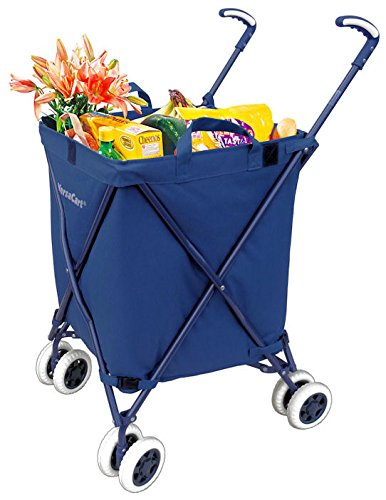 51TD1qgh5nL - 10 Best Folding Shopping Carts
