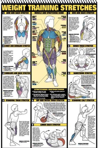 61GRMtNEUgL - The Best 17 Home Gym Posters to Motivate You!