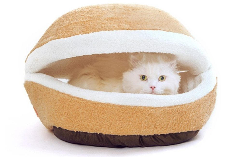 61bcLib6elL. SL1169  1024x651 - 24 Affordable Products You Didn't Know You Needed For YOUR CAT! + Reviews