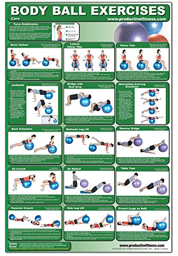 61idyndZAAL - The Best 17 Home Gym Posters to Motivate You!