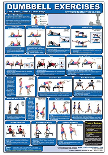 61zBI0azpTL - The Best 17 Home Gym Posters to Motivate You!