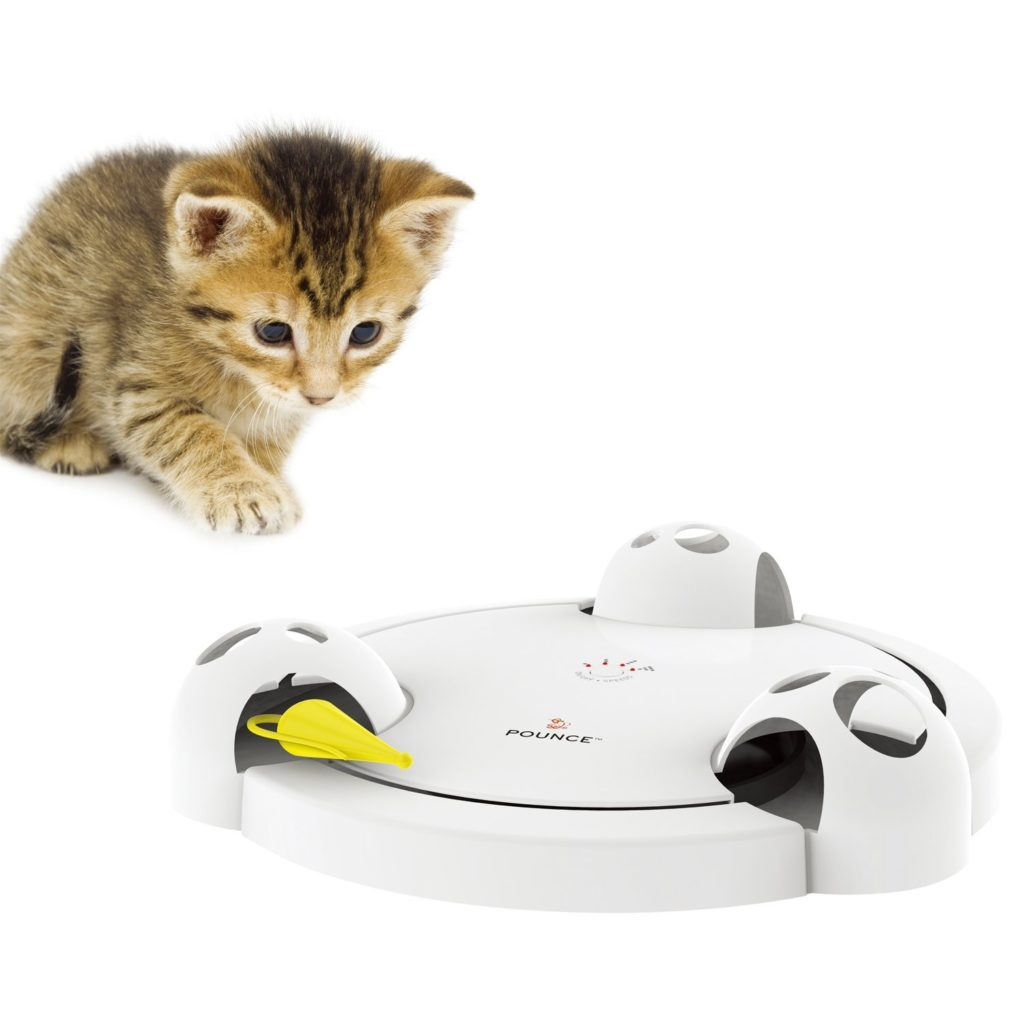71SNxPHgFHL. SL1500  1024x1024 - 24 Affordable Products You Didn't Know You Needed For YOUR CAT! + Reviews