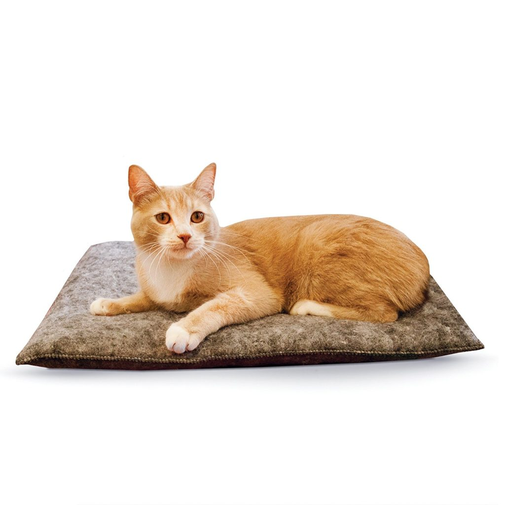 81bPAXiAHcL. SL1500  1024x1024 - 24 Affordable Products You Didn't Know You Needed For YOUR CAT! + Reviews