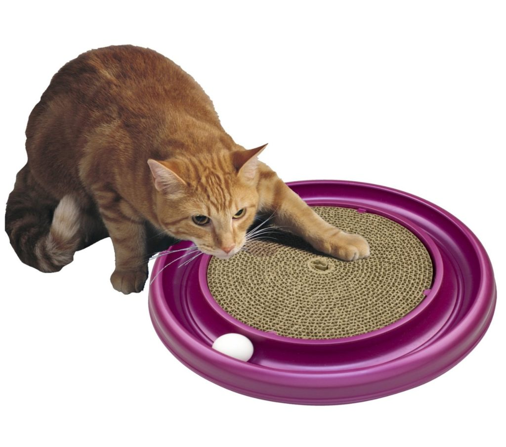 81s lkIuTL. SL1500  1024x904 - 24 Affordable Products You Didn't Know You Needed For YOUR CAT! + Reviews