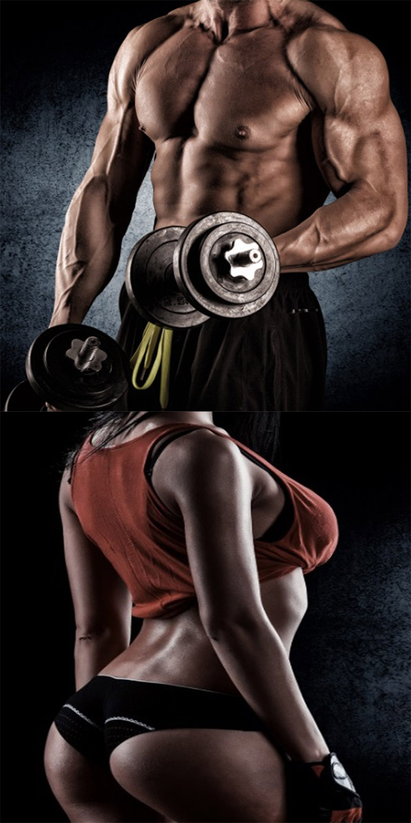 Our Top 20 Most Popular Workout Programs - Our Top 20 Most Popular Workout Programs